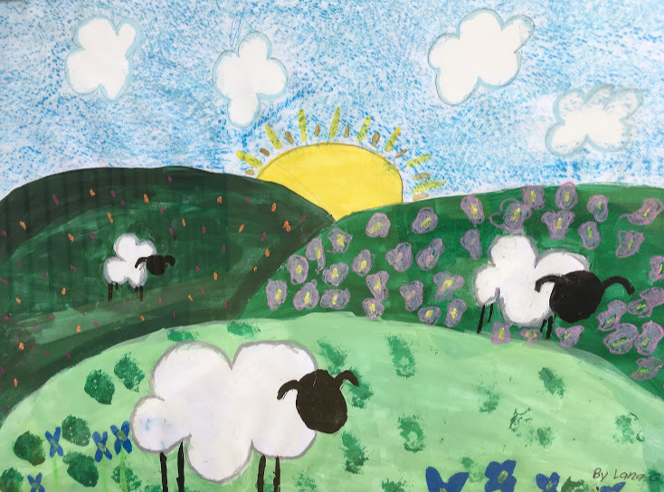 a sheep pic lana