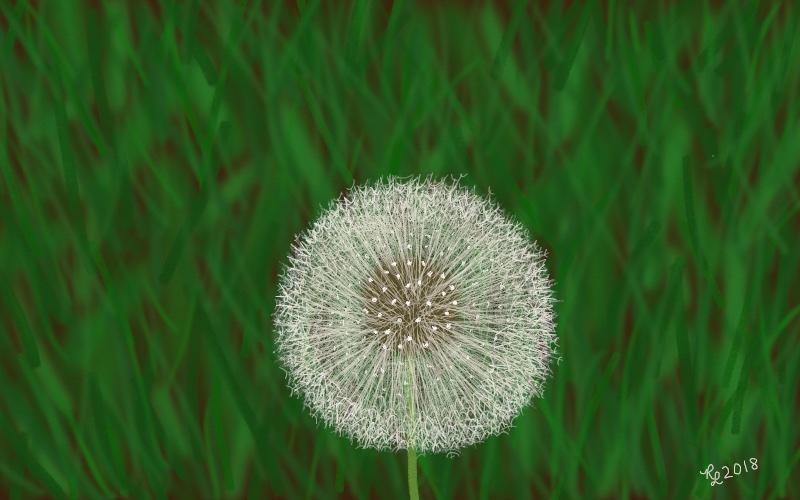 18 dandelion pattern 9;30 final